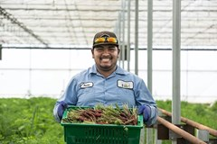 Love what you do any you'll never work a day in your life! Say hello to Tomas - always wears a smile. #ThisIsFarming
