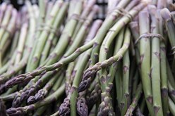 Appeal of Fresh Asparagus: From Ancient Times Until Today Image