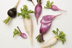 Root Vegetable Sizing Guide From The Chef's Garden Image