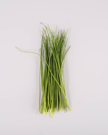 Chives-Microgreen-Isolated