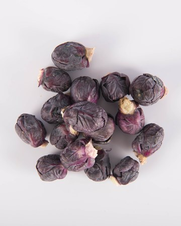 Brussels Sprouts-Red-Petite-Isolated