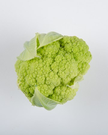 alverdale-cauliflower-isolated