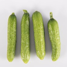 Traditional Cuke