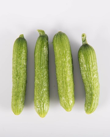 Cucumbers-Demi Cuke-Isolated