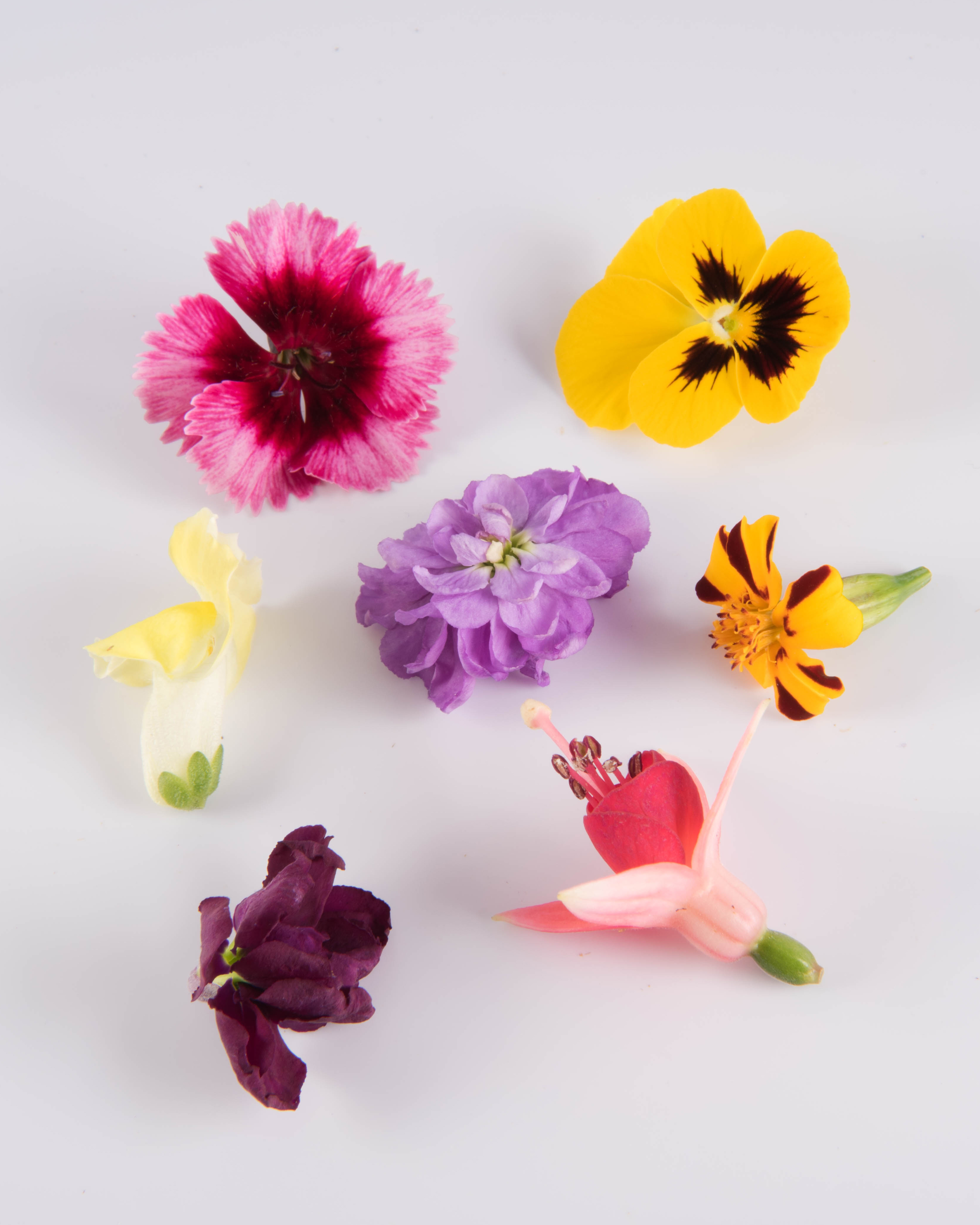 Chef Garden: Mixed Edible Flowers: Wide Range Of Hues, Flavors