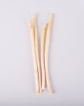 Asparagus-White-Baby-Isolated