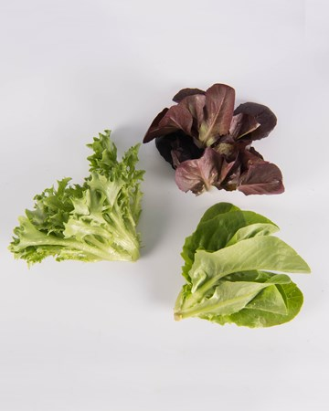 Mixed-Lettuce-Ultra-Isolated