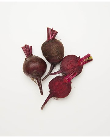 Beets-Bulls-Blood-Young-1-of-1