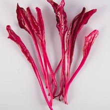 Sunset Blush Beet