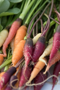 Doing a Double Take: Petite Carrots Image