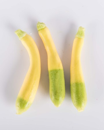 zephyr zucchini yellow green zucchini with almond flavor the