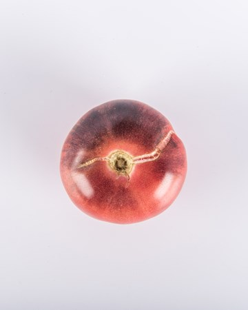 Amethyst Jewel Toy Box Tomato