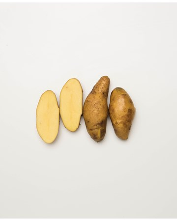 Potato-Austrailian-Cresent-B-1-of-1