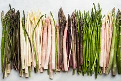 Incredible Diversity of Fresh Asparagus: Colors and Sizes Image